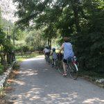 un adulto e tre bambini in bicicletta su pista ciclabile