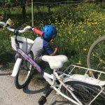 bicicletta e un bimbo che raccoglie fiori