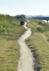 Persona in carrozzina di spalle su percorso naturalistico